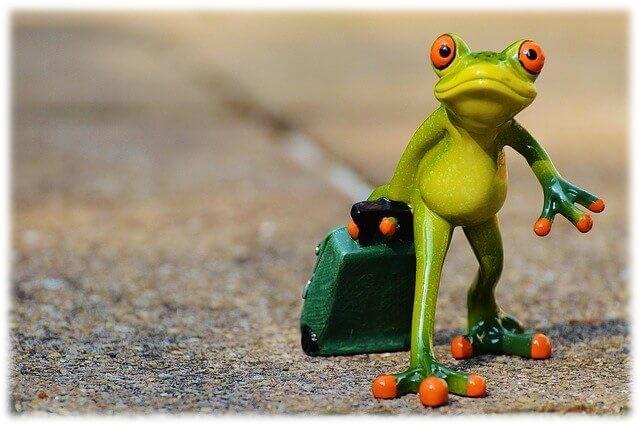 カエルが荷物を運ぶイメージ